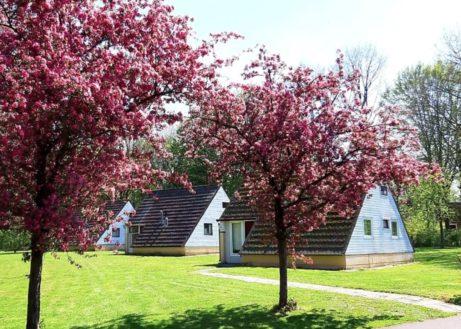 Groenpark Simpelveld-bungalow-voorjaar