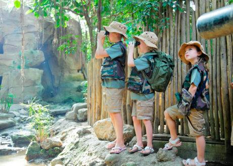 Op avontuur in de Jungle Dome
