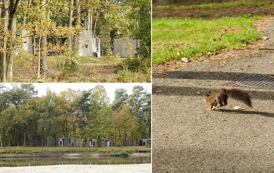 Fotoreportage Landal het Vennenbos