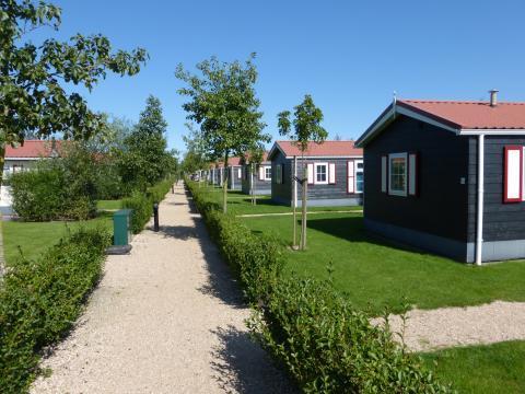 Vakantiepark de Meerpaal Hotel - room photo 4236616