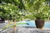 Suptropisch zwembad