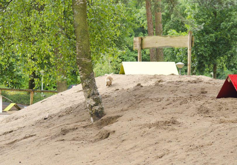 rabbit-hill-konijn