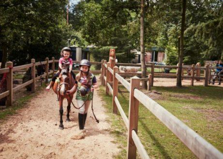 Pony cottage op Erperheide