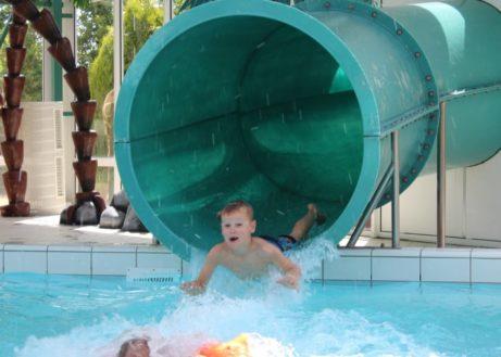 ginsterveld-zwemmen